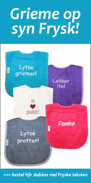 Voorbeeld-Lytse-banner-slabkes