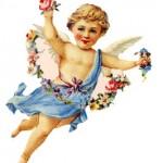 engelbloemen