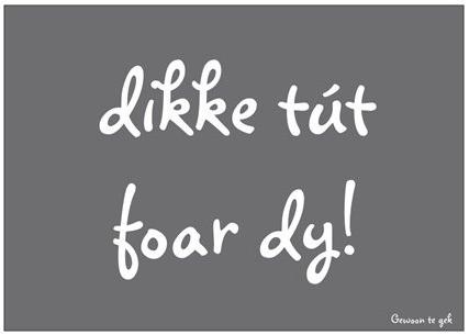 dikke_tut_foar_dy