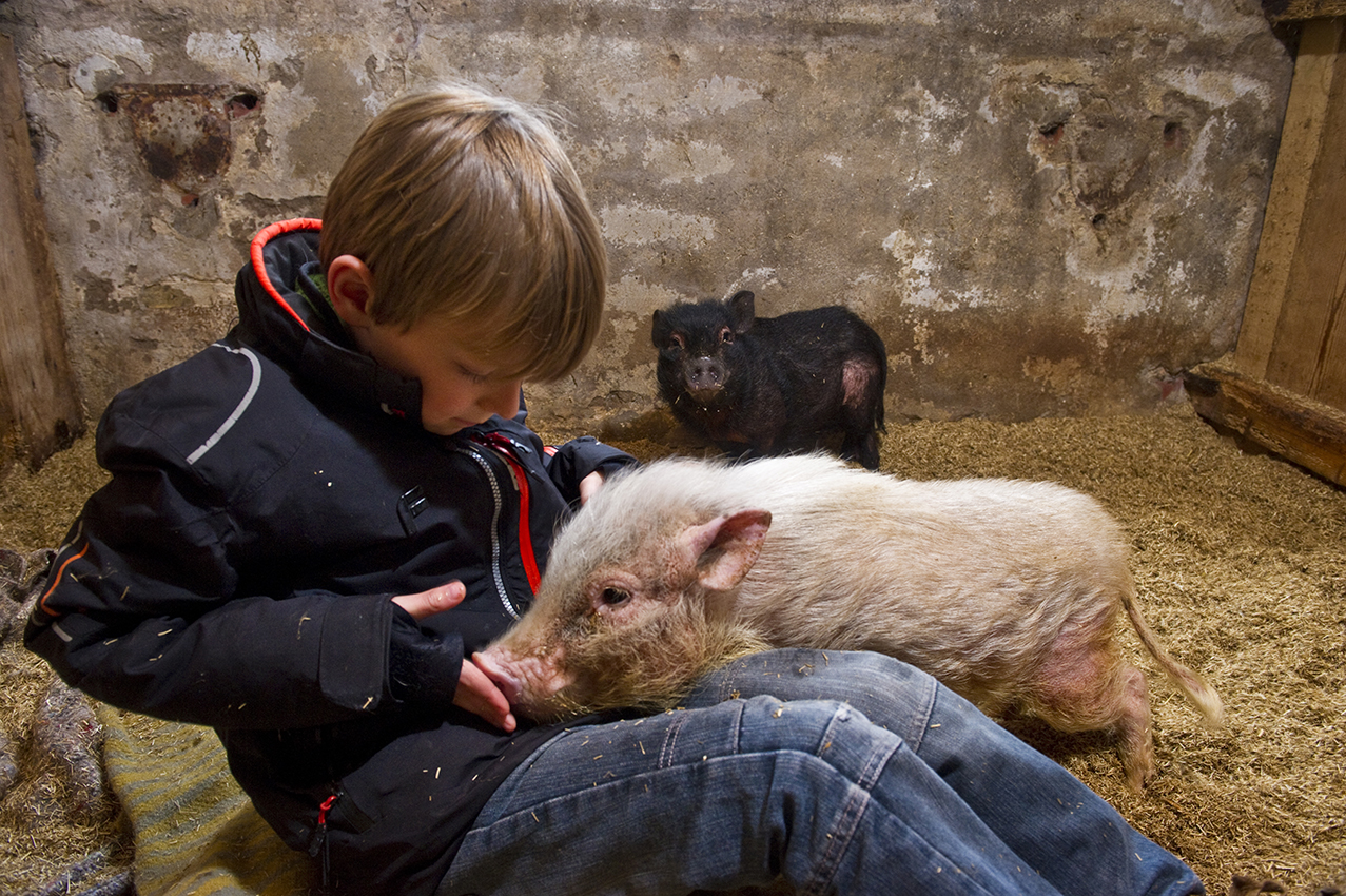 Foto: Hoge Noorden / Jacob van Essen foto dd 24-02-2015 De praatstok in Reduzum afuk Heit en Mem De Praatstok Praktijk voor Kindercoaching . .